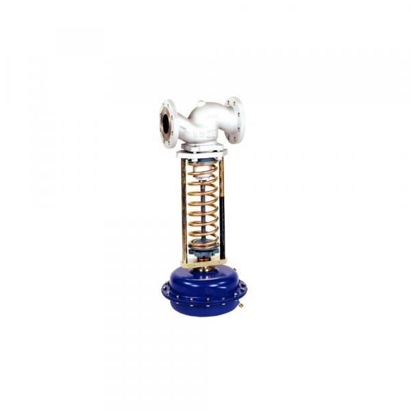 Riduttori di pressione autoazionati - Accessori Vapore | Hot & Cold